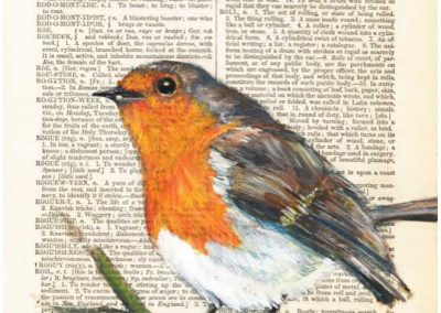 Dictionary commission - Robin (painted in gouache)