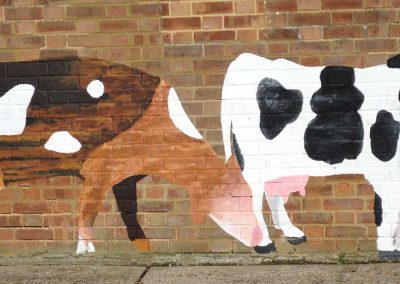 The Cows - a mural for Standalone Farm Letchworth by Katy Dynes