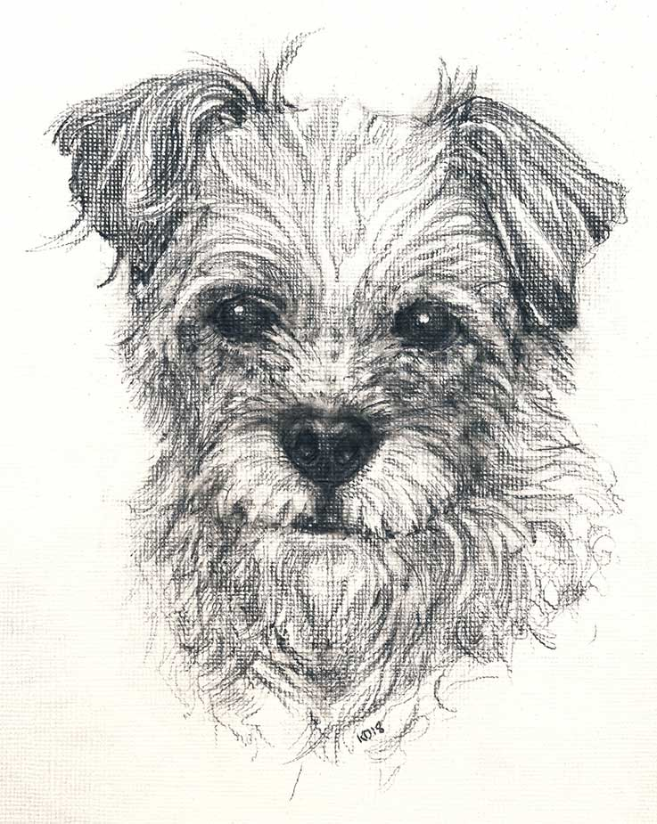 Pet portrait of Tiggy