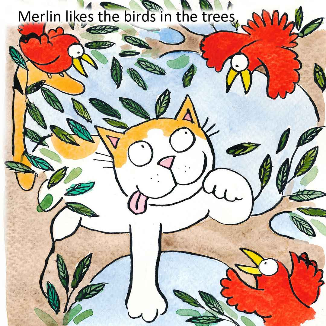 Merlin - from 'Our Cat Family' by Katy Dynes